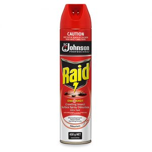 RAID ONE SHOT CRAWLING INSECT KILLER 450G